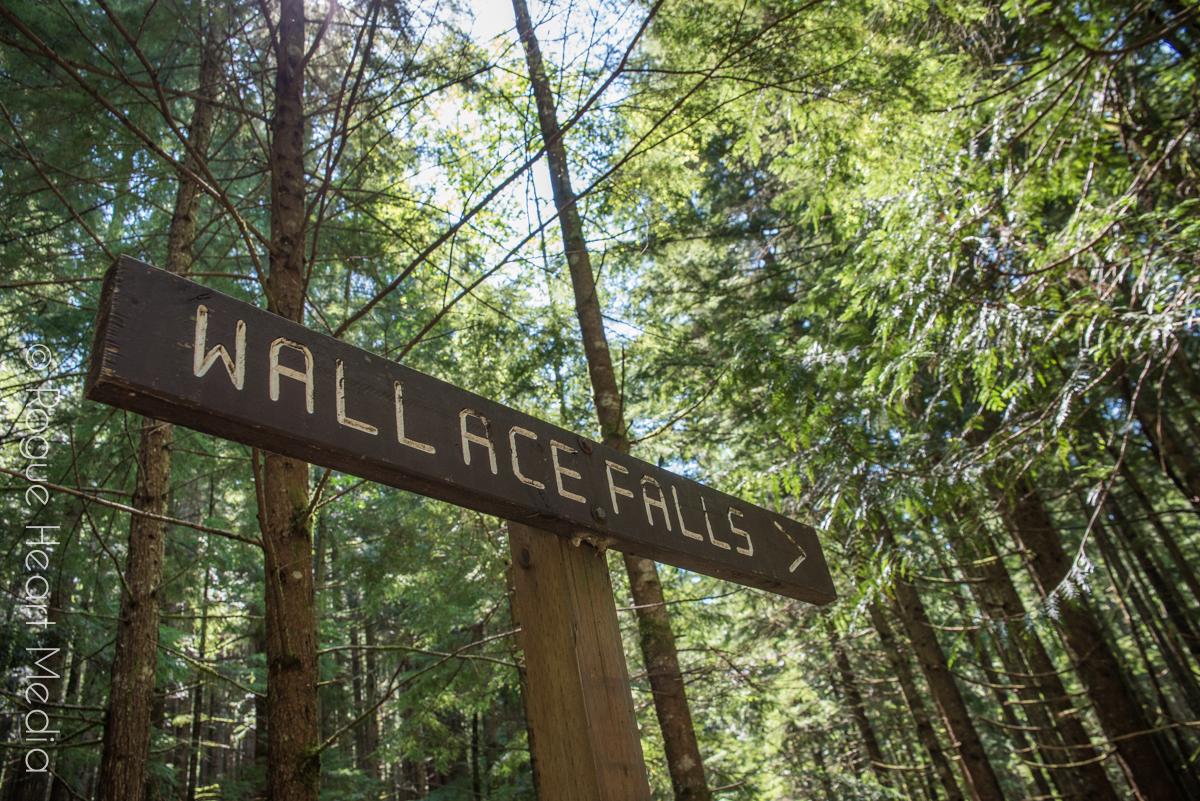 wallacefalls